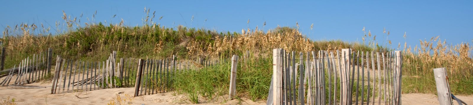Outer Banks Landscape